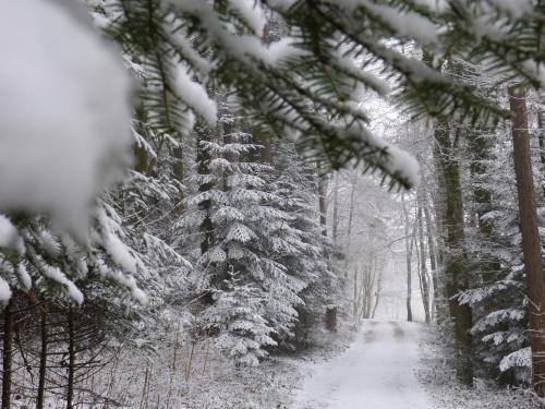 jeszcze zimowy klimat