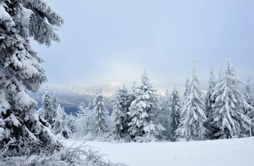 Kochani, przyjmijcie i ode mnie życzenia cudownych Świąt Bożego Narodzenia!