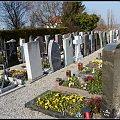 szwajcarski cmentarz