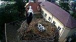 http://images72.fotosik.pl/544/263402b11ea03341m.jpg