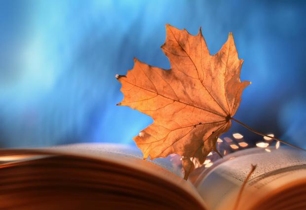 Jesiennie III