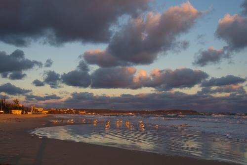 Wszystkim lubiącym zimowe morze :))
