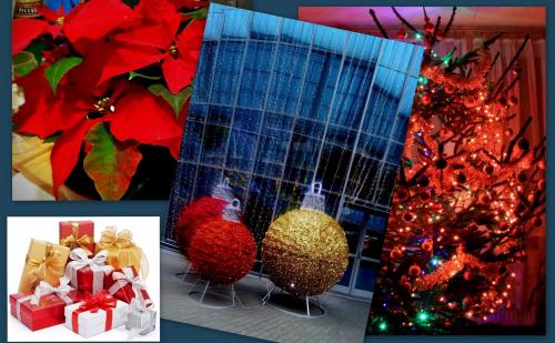 Zdrowych, pogodnych , wesołych Świąt życzę wszystkim Fotosikowcom !
