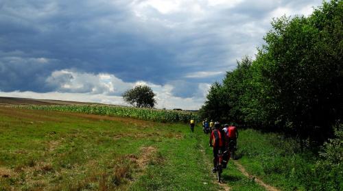 Czas planowac wyprawy .. na razie zatwierdzono Park Krajobrazowy Doliny Baryczy i okolice Raciborza :)